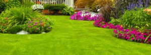 Oud gazon verwijderen; wat zijn de mogelijkheden voor het verwijderen van gras?