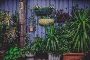 5 tips voor een kleine tuin